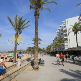 Bars and restaurants in Levante beach